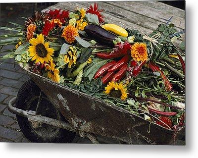 Sunflowers, Dahlias, Eggplants, Pepper Metal Print by Jonathan Blair