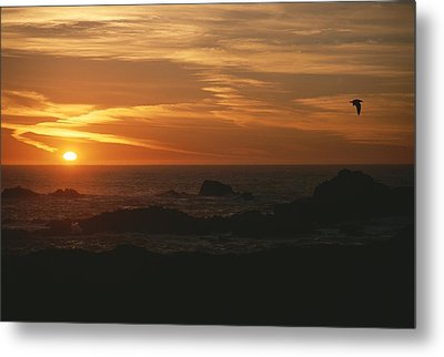 Sunset Over The Pacific Ocean Metal Print by Todd Gipstein