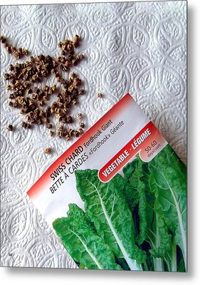 Swiss Chard Seeds Metal Print by Will Borden