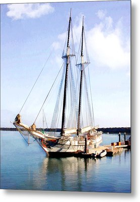 Tall Ship In Harbor Metal Print by Elaine Plesser