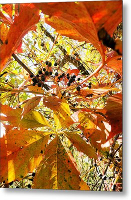 The Beauty In Dying Metal Print by Trish Hale