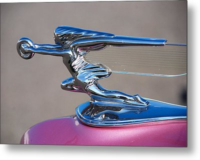 Metal Print featuring the photograph The Chase Continues... by John Schneider