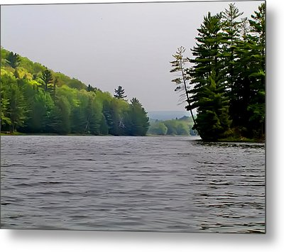 The Delaware River Metal Print by Bill Cannon