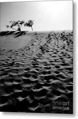The Dunes At Dusk Metal Print by Tara Turner