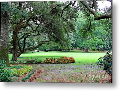 Metal Print featuring the photograph The Great Lawn by Laurinda Bowling