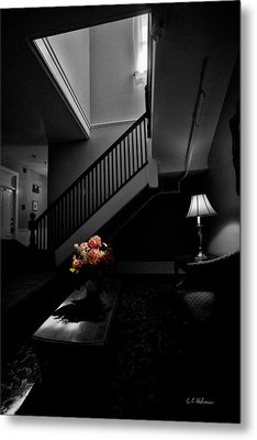 The Landing Metal Print by Christopher Holmes