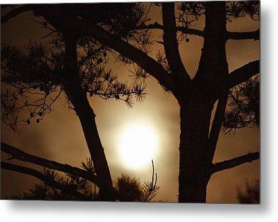 The Moon Rises Above Nanko Lake Metal Print by Michael S. Yamashita