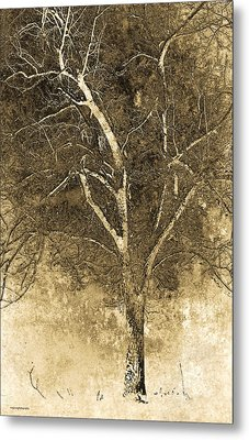 The Orchard Way Metal Print by Ron Jones