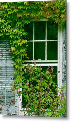 The Other Window Metal Print