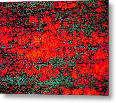 The Red Shed Metal Print by Amy Sorrell