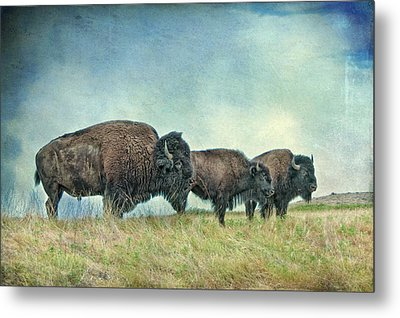 Three In A Row Metal Print by Tamyra Ayles