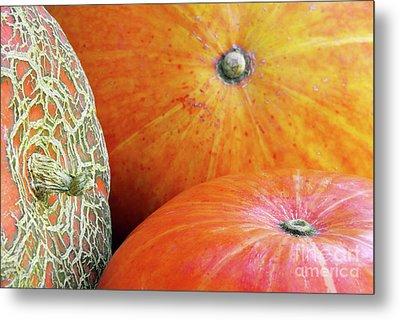Three Pumpkins Metal Print by Carlos Caetano