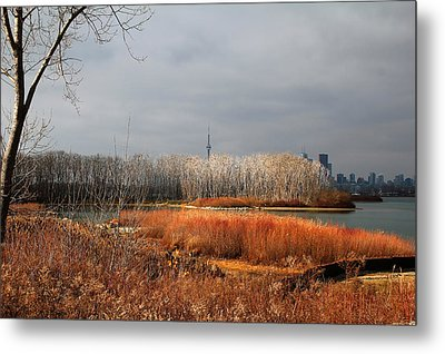 Toronto Skyline 12 Metal Print by Andrew Fare
