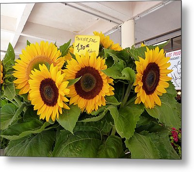 Tournesol Metal Print by Carla Parris