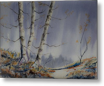 Metal Print featuring the painting Tranquility by Rob Hemphill