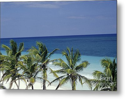 Metal Print featuring the photograph Tropical Paradise Sian Kaan Mexico by John  Mitchell