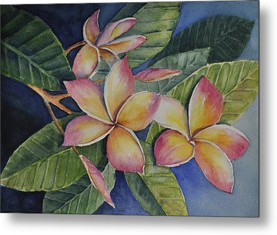 Metal Print featuring the painting Tropical Plumerias by Sandy Fisher