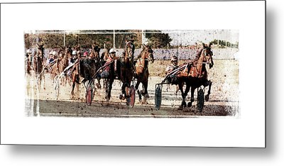 Metal Print featuring the photograph Trotting 3 by Pedro Cardona