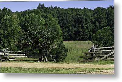 Trumpet Vine And Fence At Appomattox Courthouse Virginia Metal Print by Teresa Mucha