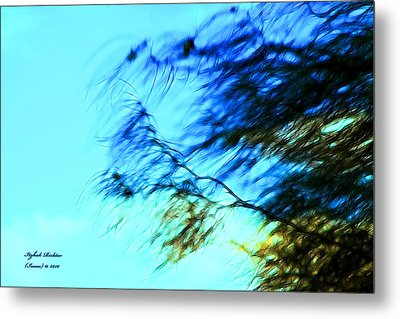 Metal Print featuring the photograph Under The Tree by Itzhak Richter