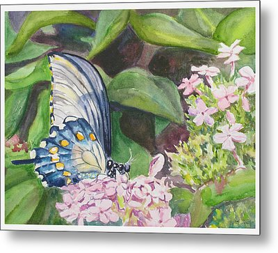 Vacition Butterfly Metal Print by Judy Loper