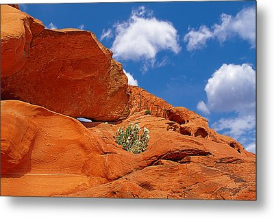 Valley Of Fire - Adventure In Color And Beauty Metal Print by Christine Till