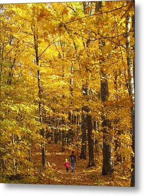 Walk In Woods Metal Print