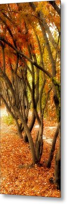 Metal Print featuring the painting Walk With Me by Susan Fisher
