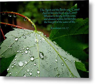 Water Of Life Metal Print