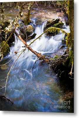 Waters Creek - Spring 2011 Metal Print by Jim Adams