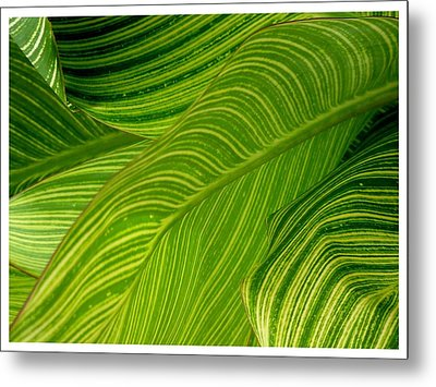 Waves Of Green And Yellow Metal Print
