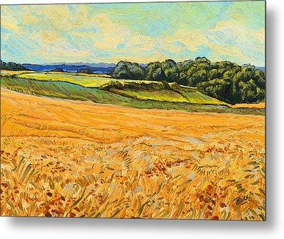 Wheat Field In Limburg Metal Print by Nop Briex