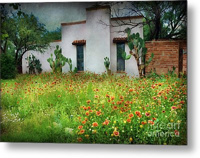 Metal Print featuring the photograph When A House Is A Home by Barbara Manis