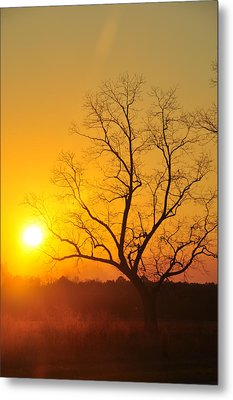 When The Day Is Over Metal Print by Jan Amiss Photography