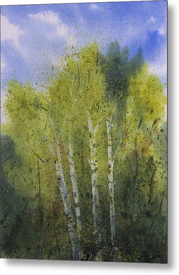 White Birch Trees Metal Print by Debbie Homewood