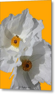 White Poppies On Yellow Metal Print