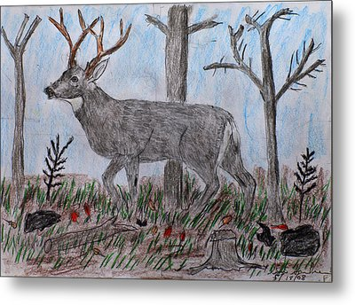 Whitetail Deer In A Meadow Metal Print