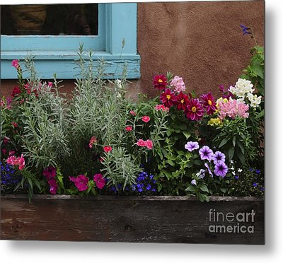 Metal Print featuring the photograph Window-box II by Sherry Davis