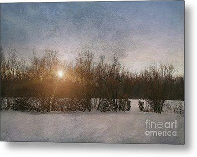 Winter Landscape  Metal Print by Sandra Cunningham