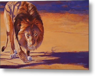 Within Striking Distance - African Lion Metal Print by Shawn Shea
