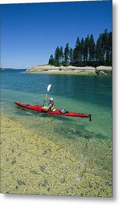 Woman Kayaking, Penobscot Bay, Maine Metal Print by Skip Brown