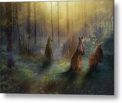 Hush Metal Print by Trudi Simmonds