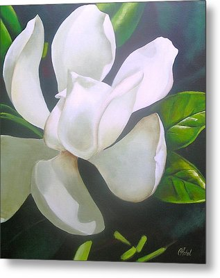 Magnolia Delight Painting Metal Print