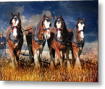 The Team Metal Print by Trudi Simmonds