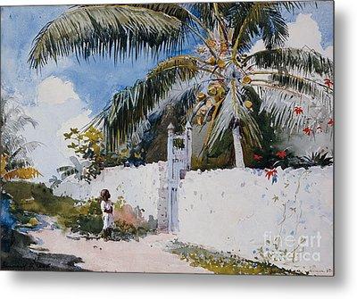A Garden In Nassau Metal Print by Winslow Homer