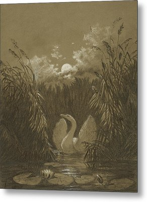 A Swan Among The Reeds, By Moonlight Metal Print by Carl Gustav Carus