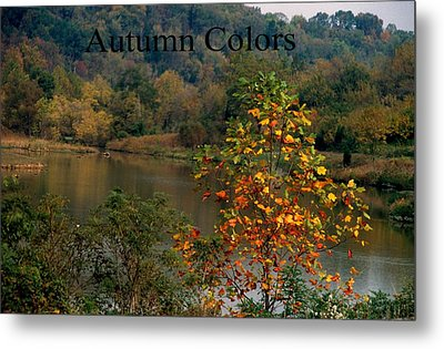 Autumn Colors Metal Print by Gary Wonning