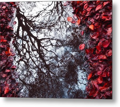 Autumn Reflections II Metal Print by Artecco Fine Art Photography