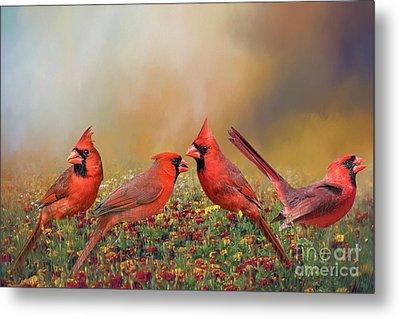 Cardinal Quartet Metal Print by Bonnie Barry