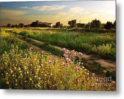 Countryside Landscape Metal Print